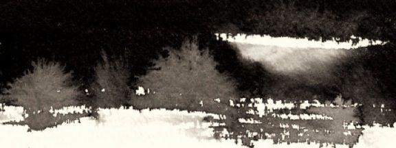 landscape5web.jpg